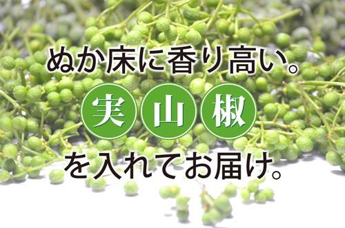 山椒の実ぬか床販売ページ